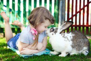 Trouver l'animal idéal pour son enfant, lequel choisir ?