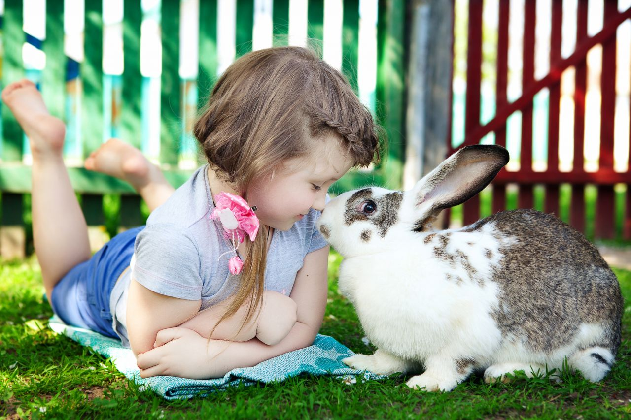 Trouver l'animal idéal pour son enfant