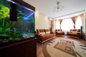 Trouver l'emplacement idéal de l'aquarium dans la maison