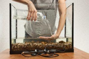 Les meilleures astuces afin de réussir un parfait nettoyage d'un aquarium