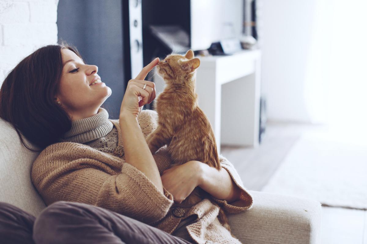 vie en compagnie d'un animal domestique