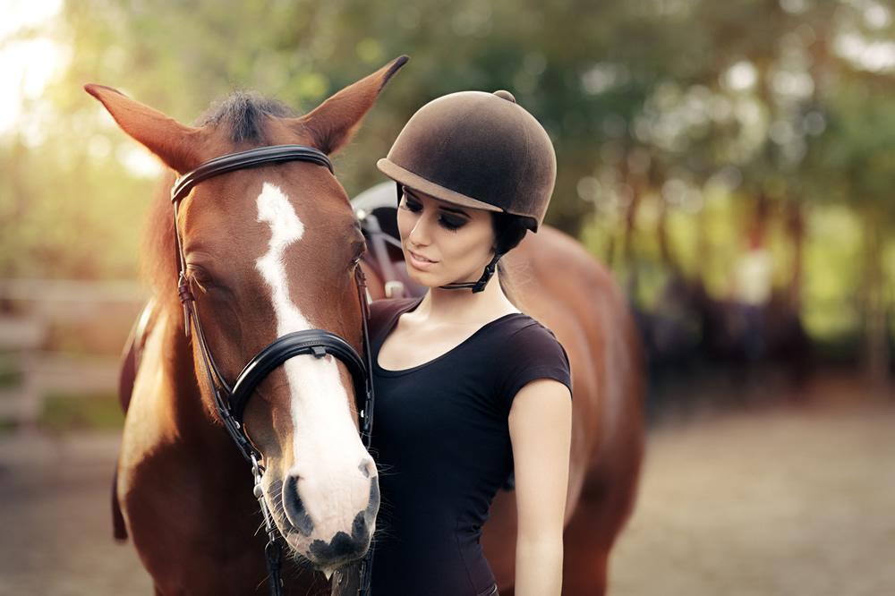 dresser son cheval