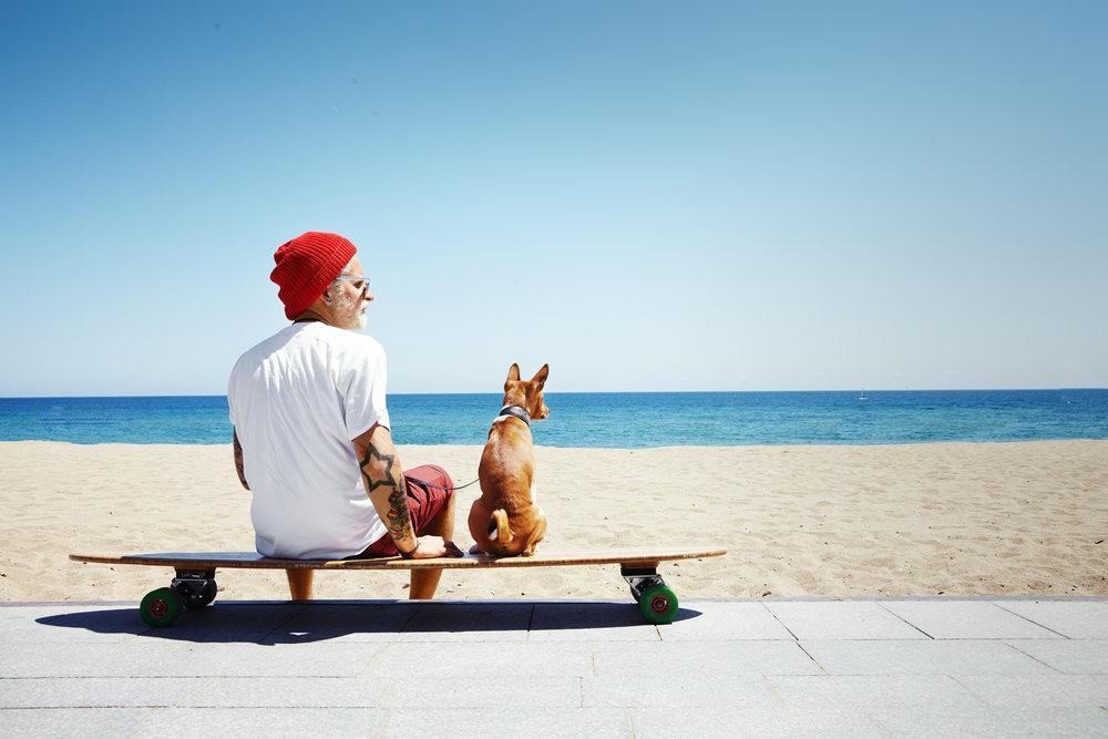 vacances avec son animal de compagnie
