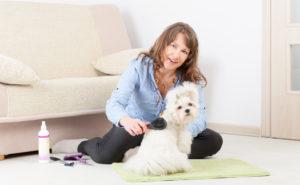 Astuces pour entretenir efficacement le pelage de votre chien